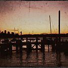 Sydney Harbour by rossco