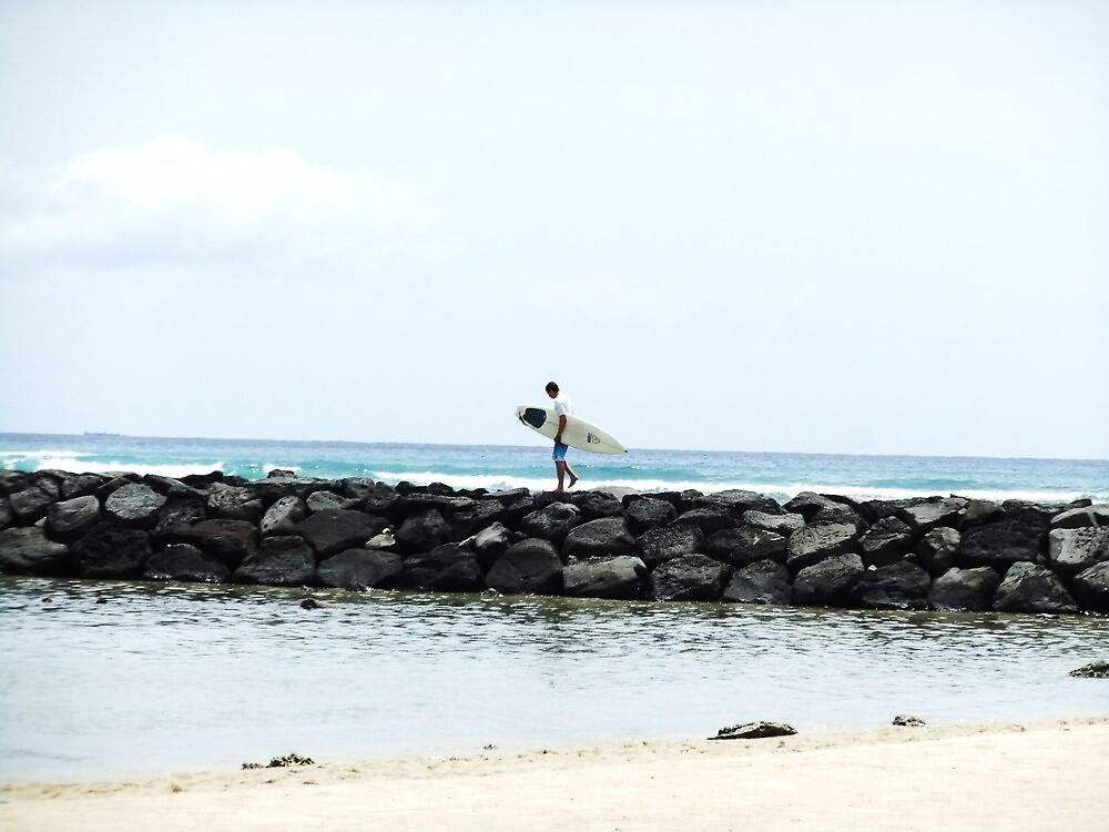 Wandering Surfer by jlv-