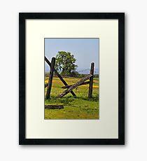 Spring in Northern California Framed Print