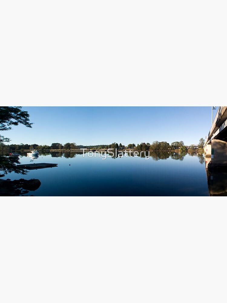 Moruya Panorama by TonySlattery