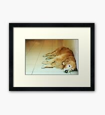Tired like me Framed Print