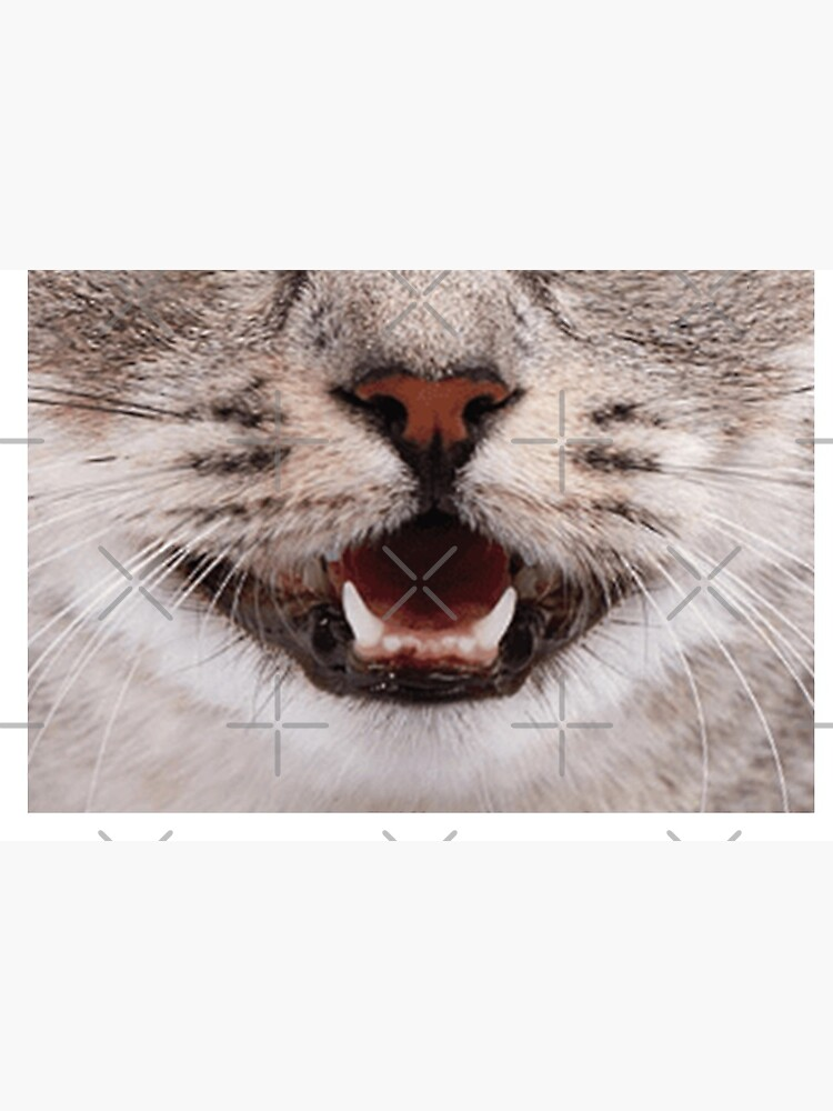 Cat Nose and Mouth ~ Cute and Funny Animal Medical Face Masks ~ 2 by Neon-Wolf
