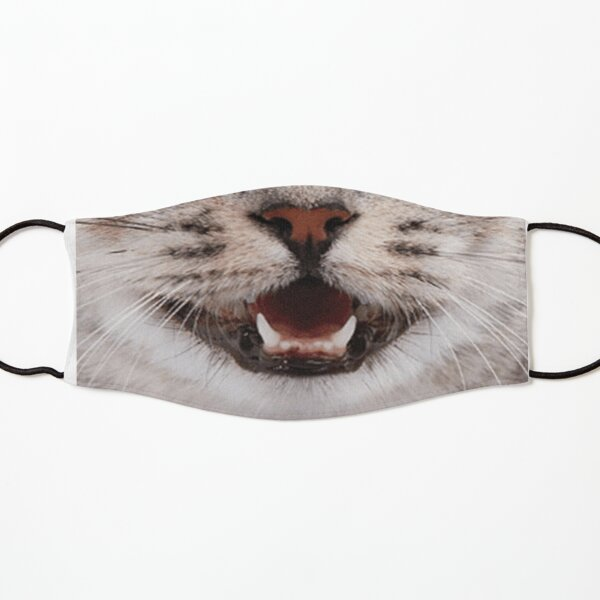 Cat Nose and Mouth ~ Cute and Funny Animal Medical Face Masks ~ 2 Kids Mask