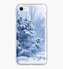 Winters scene  iPhone Case/Skin