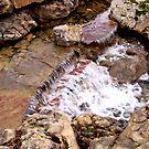 Waterfalls at Dallas Arboretum by aprilann