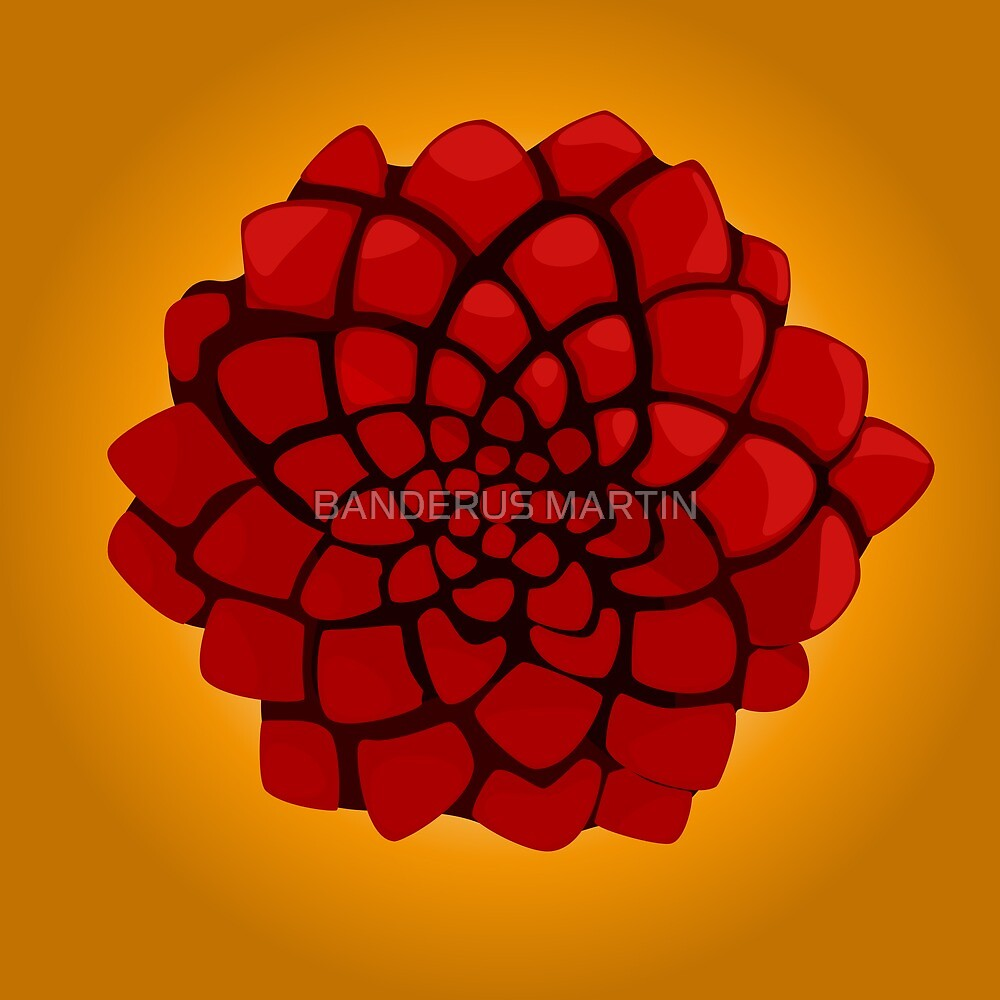 Rose of the desert by BANDERUS MARTIN
