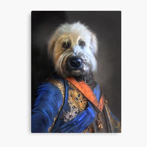 Dog Portrait - Oliver Metal Print