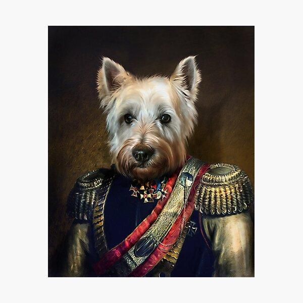 West Highland Dog Portrait - Meatball Photographic Print