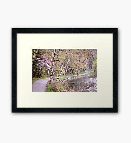 Springtime at Hidden Lake Framed Print