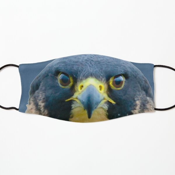 The Eyes of a Peregrine Falcon Kids Mask