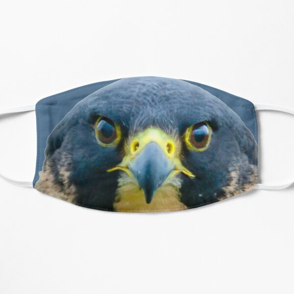 The Eyes of a Peregrine Falcon Mask