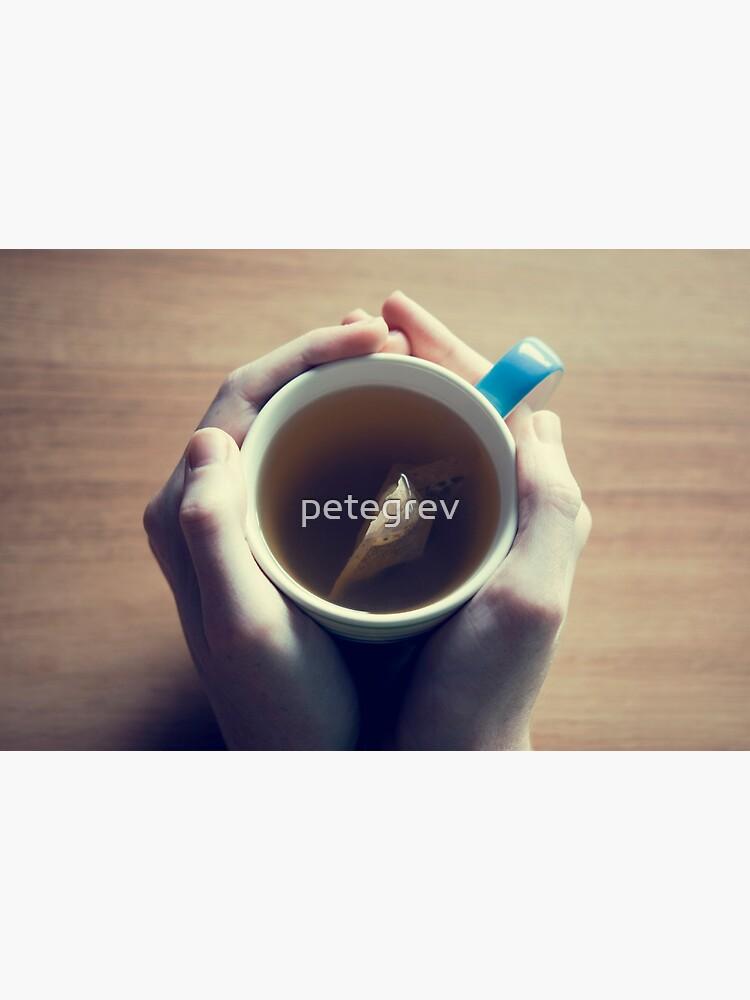 Day 284 - 19th April 2012 by petegrev