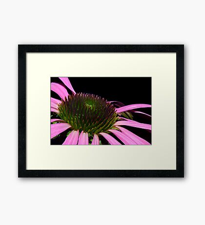 Beauty can be found in the strangest of places Framed Print