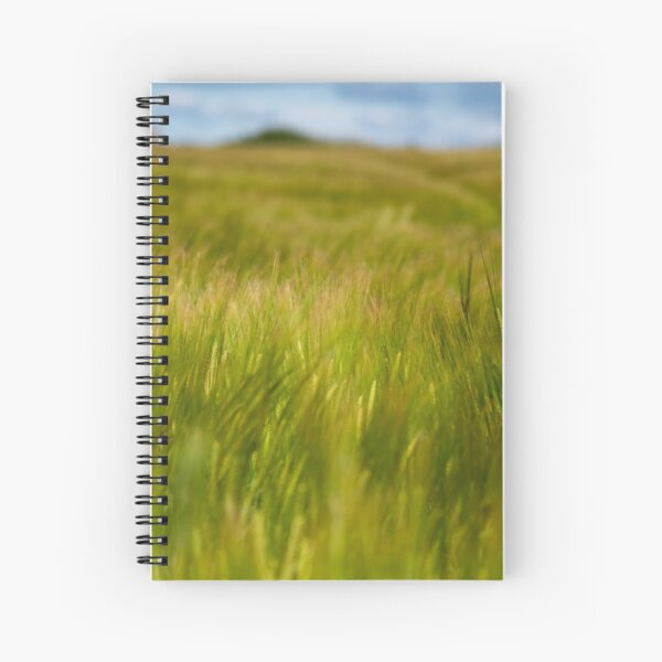 Bearded Wheat in the early summer sun Spiral Notebook