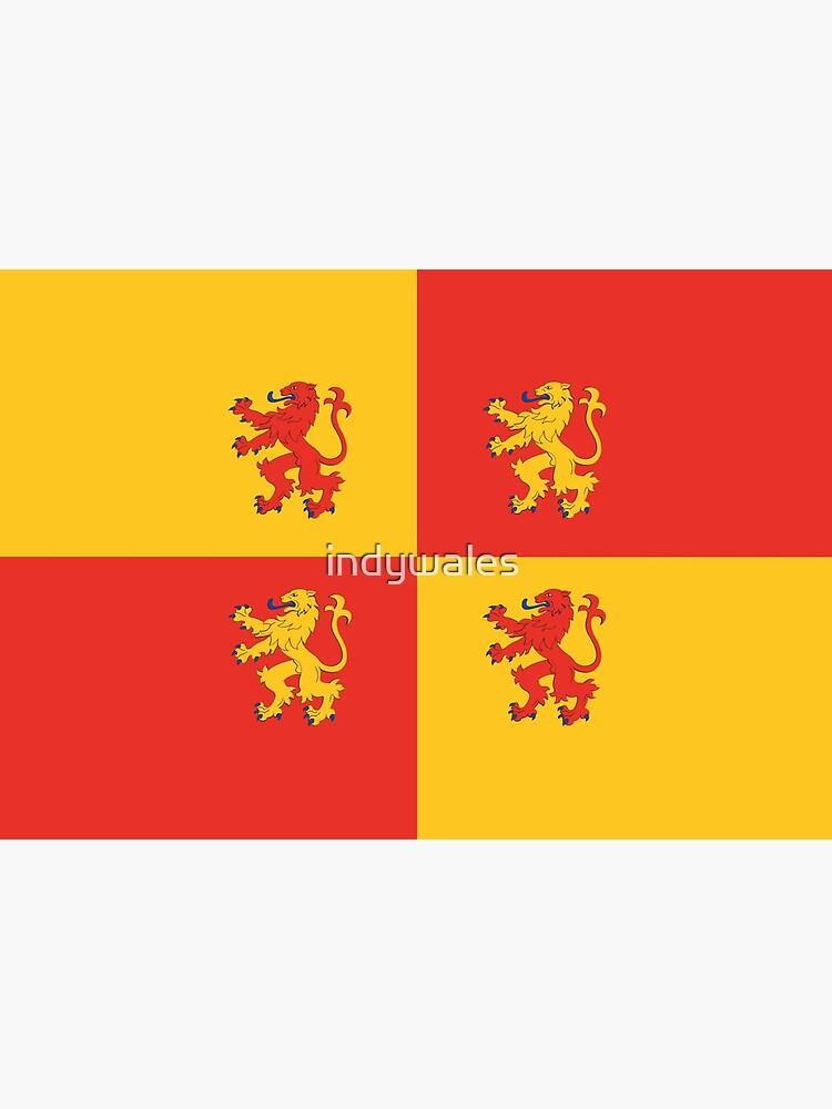 Baner Owain Glyndŵr Flag, Welsh Flag, Wales by indywales