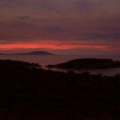 Flinders Island Emita by Andrew  Makowiecki