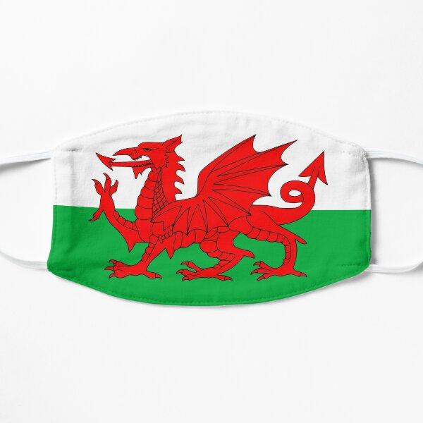 Welsh Flag, Baner Cymru, Y Ddraig Goch, Welsh Dragon Mask