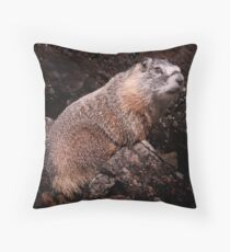 I'm The Nate Silver of Groundhogs Throw Pillow