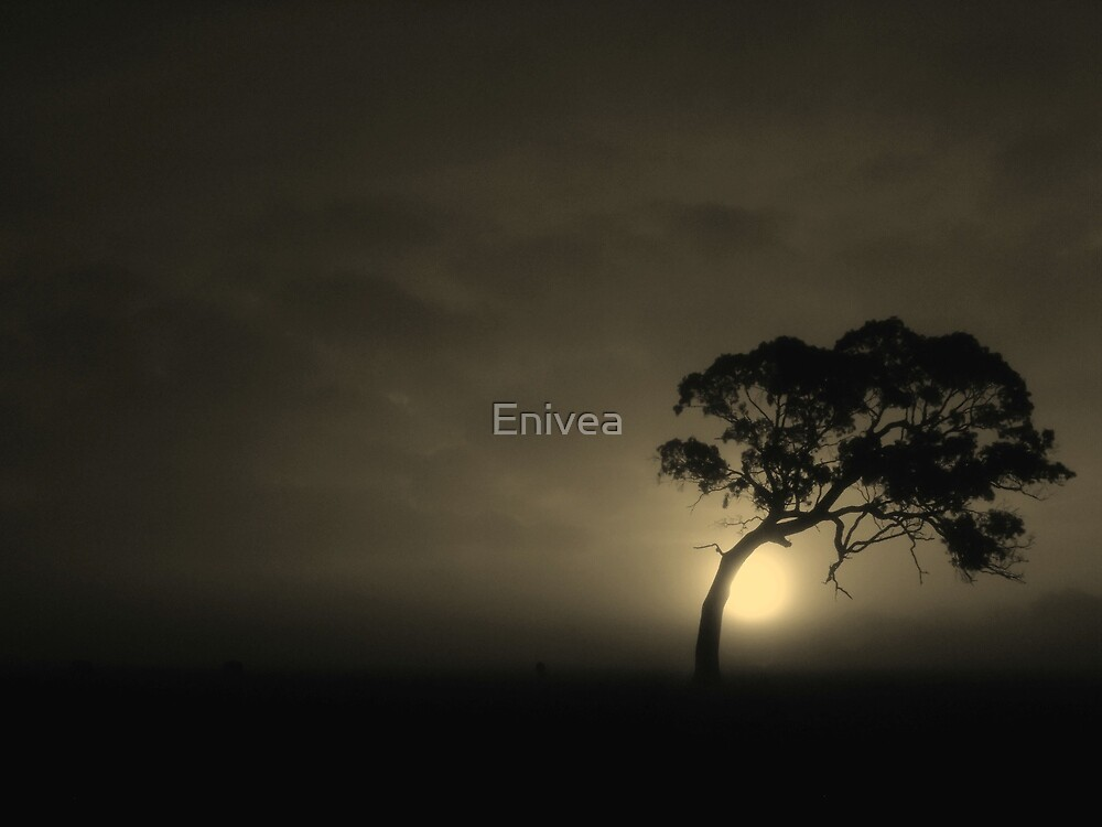 The Bodhi-tree by Enivea