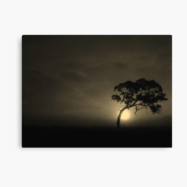 The Bodhi-tree Canvas Print