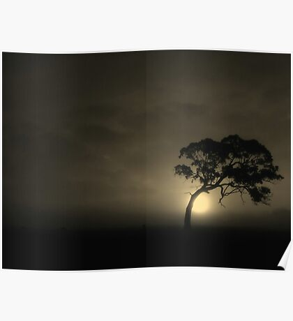 The Bodhi-tree Poster