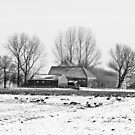 Winter Wonderland by Robert Abraham