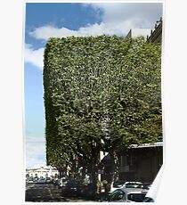 Topiary? Poster