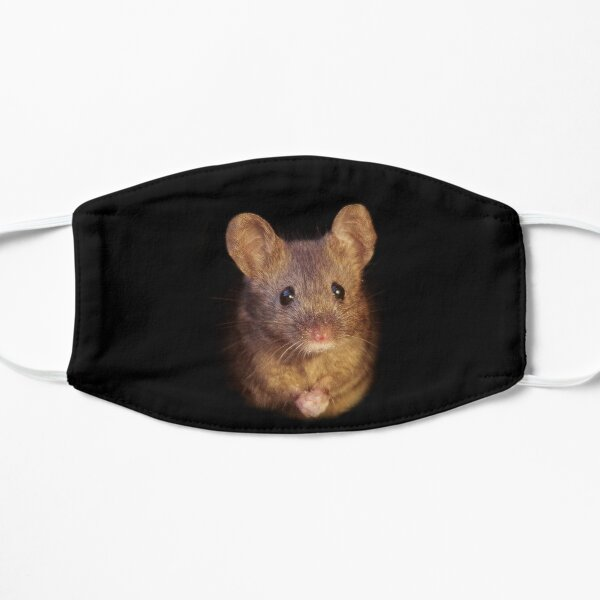 Mouse with cold hands Mask