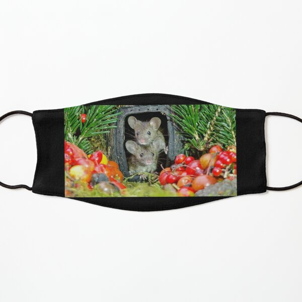 two wild garden house mice in a log home Kids Mask