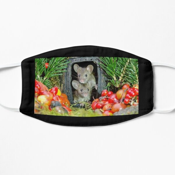 two wild garden house mice in a log home Mask