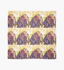 Vizsla Dog Bright colorful pop dog art Scarf