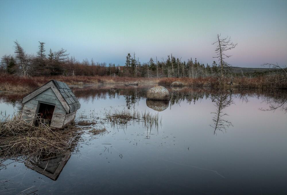 Saltwater Bayou by Kevin  Kroeker