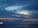 Sunrise, Brooms Head Northern NSW by Virginia McGowan