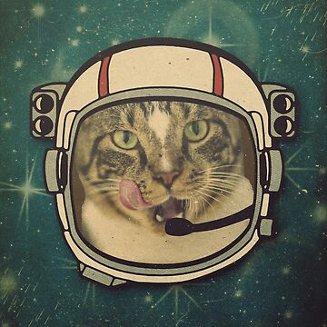 Space Cat by cesstrelle