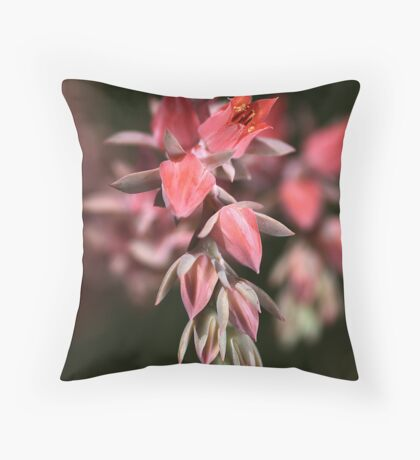Cactus Cluster Throw Pillow