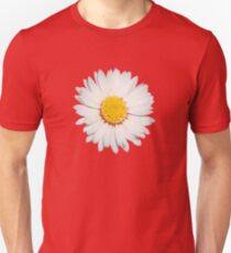 Nine Common Daisies Isolated on A Black Background T-Shirt