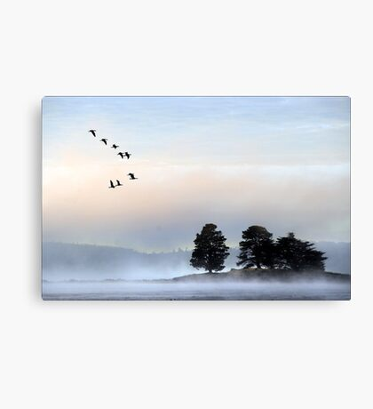 morning mist at dulverton lake Canvas Print
