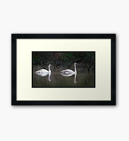 Reflected Tranquility Framed Print