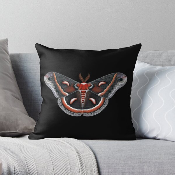 Cecropia Moth Painting Throw Pillow