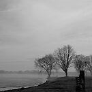 Misty Mornings by Jessica Bradford