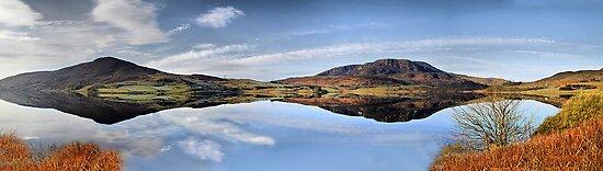 Reflections on Bala  by Irene  Burdell