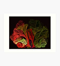Vegetable Fayre Art Print