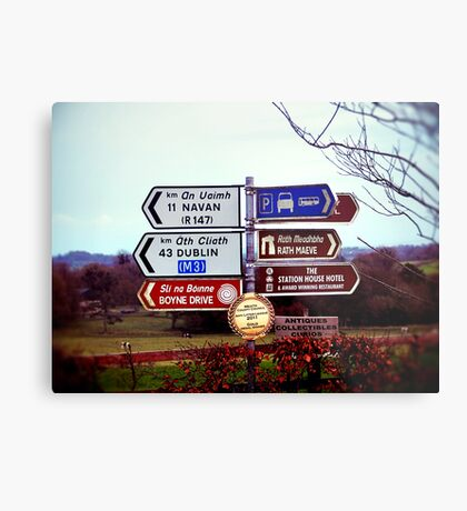 Which Way Do I Go? Metal Print