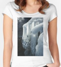Elegant Christmas Ornaments From Mother Nature Women's Fitted Scoop T-Shirt