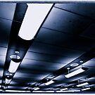 Penn Lights by barkeypf