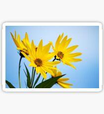 Meadow Sunflower Sticker