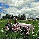 Gaspesia - The pink farm tractor by Jean-Luc Rollier