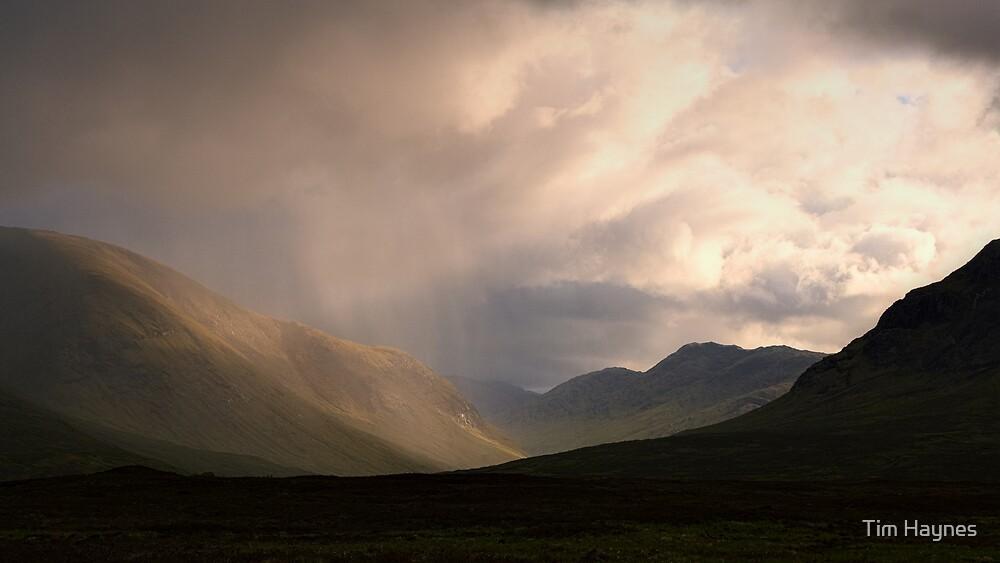 Sunlight through rain by Tim Haynes