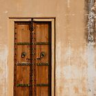 Astrologist's Door by phil decocco