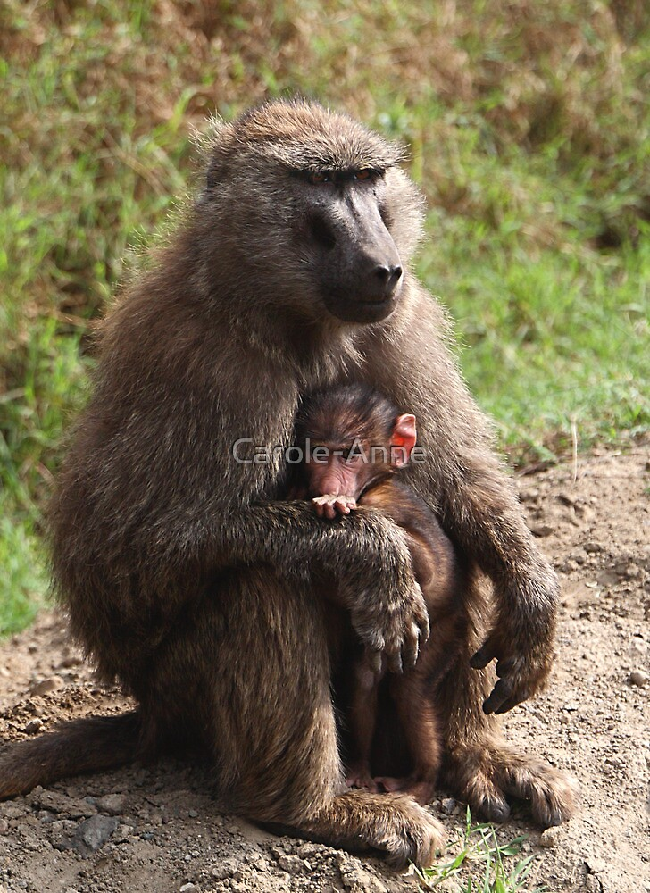 A Mother's Protection by Carole-Anne